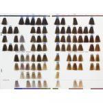 sistem-za-farbanje-kose-nijanser-trajnih-farbi-1